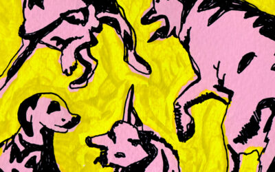 Pottery's Paul Jacobs to release 'Pink Dogs on the Green Grass' out 11th June on Blow The Fuse Records